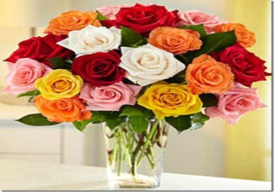 rosas a domicilio